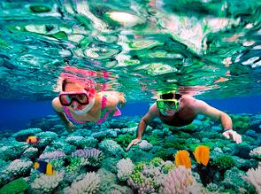 Snorkel en Alicante