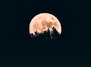 Ritual Luna de Agua